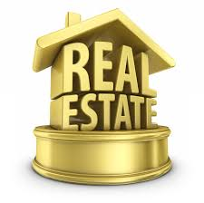 Generating the lead through real estate portal listings