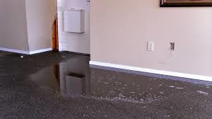 professional service of the water removal