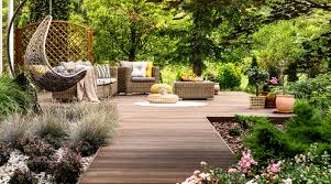 How to Bringing Your Yard Back to Life